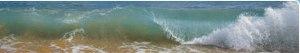 banner_wave