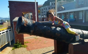 My monkey climbing the cannons on Muizenberg Station.